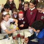 Science Week 2019 at Kiltiernan N.S.