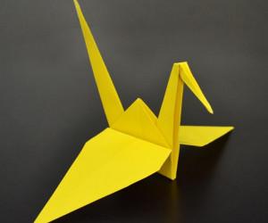 Tom Cuffe's Origami Workshop